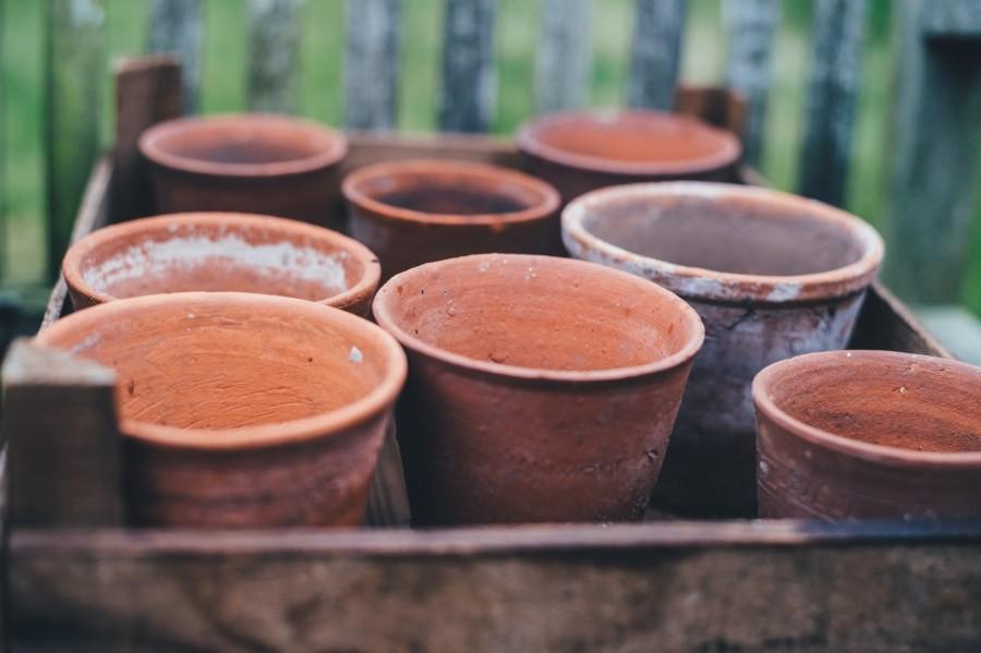Kratje met terracotta potten